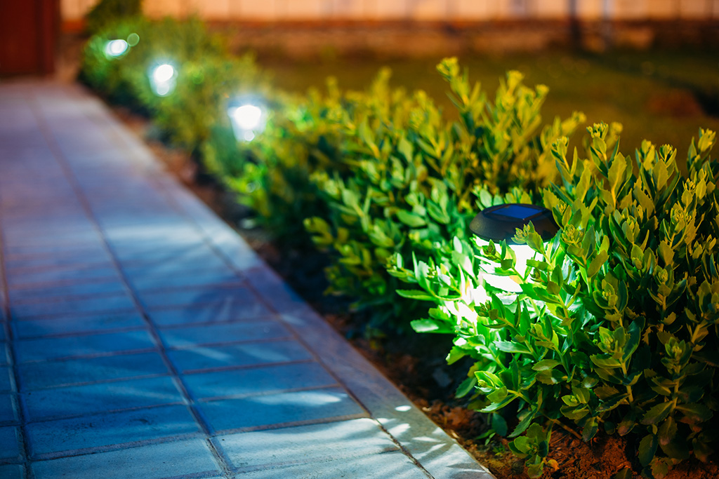 Landscape lighting Garden Light, Lanterns In Flower Bed. Garden Design